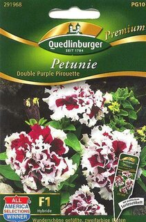 Petunien double purple Pirouet