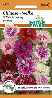 Dianthus Chineser-Nelken Mischung